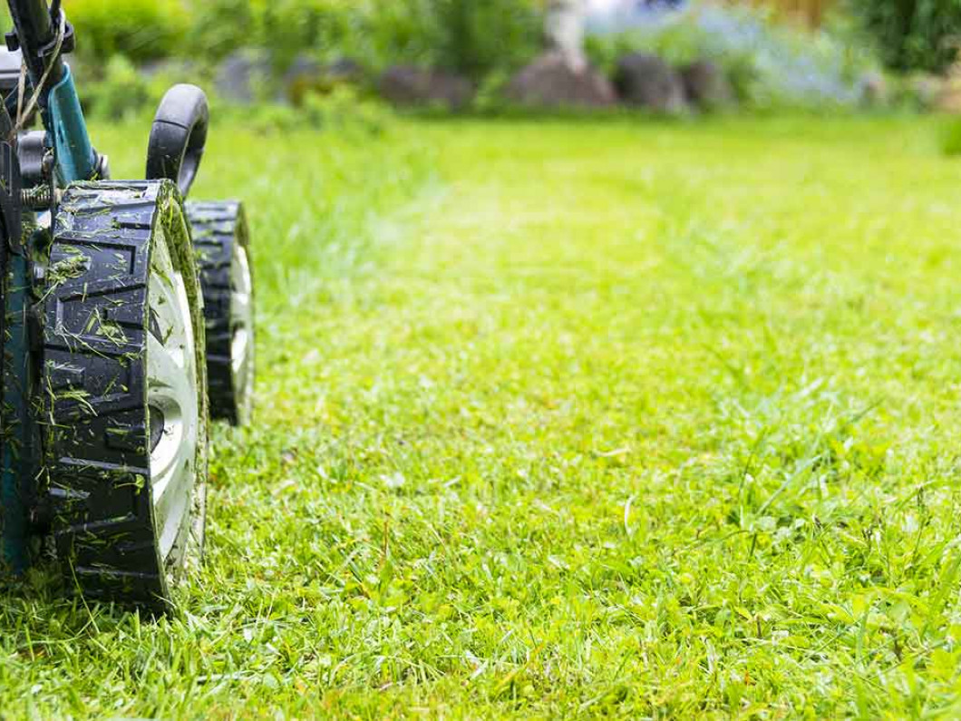 Benefits of hiring a professional grass cutting service